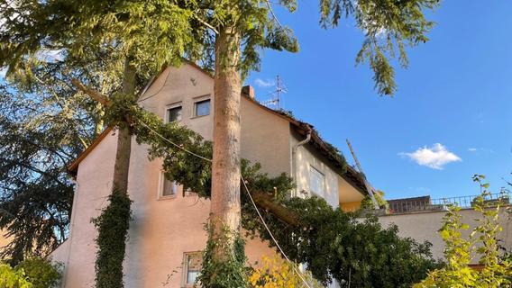 Sturmtief Ignatz: Baum stürzt auf Wohnhaus - Feuerwehr-Kran im Einsatz