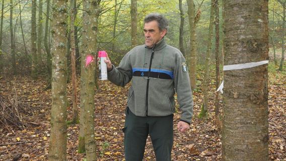Pegnitzer Forstwirt geht in den Ruhestand