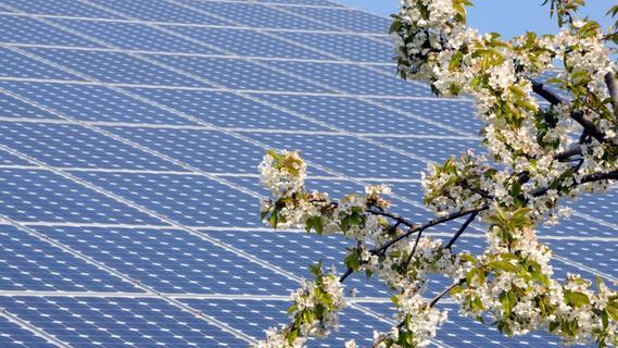 Vestenbergsgreuth: Debatten über Solarparkpläne