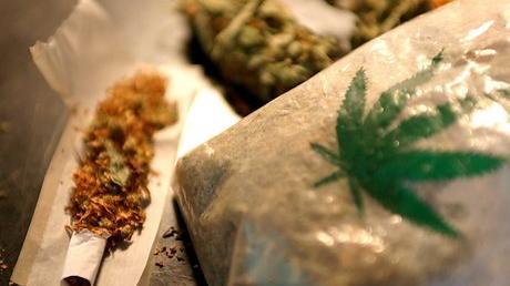 Volksdroge und Medikament: Cannabis in Deutschland und der Welt