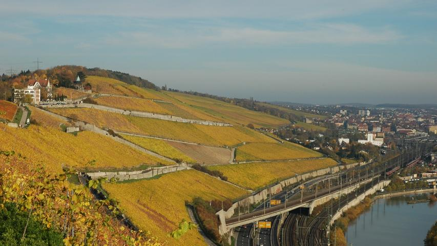 DerWürzburger Steinist einbekanntes Weinbaugebiet in Würzburg, in dem ein besonderer Tropfen heranreift. Es handelt sich um eine Steillage mit einer Hangneigung zwischen 30 und 80 Prozent. Sieerstreckt sich im Südhang des Steinbergs nördlich der Altstadt.Eine Besonderheit des Weinberges ist sein Boden: Es handelt sich um verwitterterten, mineralhaltigenMuschelkalk,in dem stellenweise Lehm- und Tonschichten eingelagert sind. Sie sollendem Wein ein besonderes Aroma verleihen.