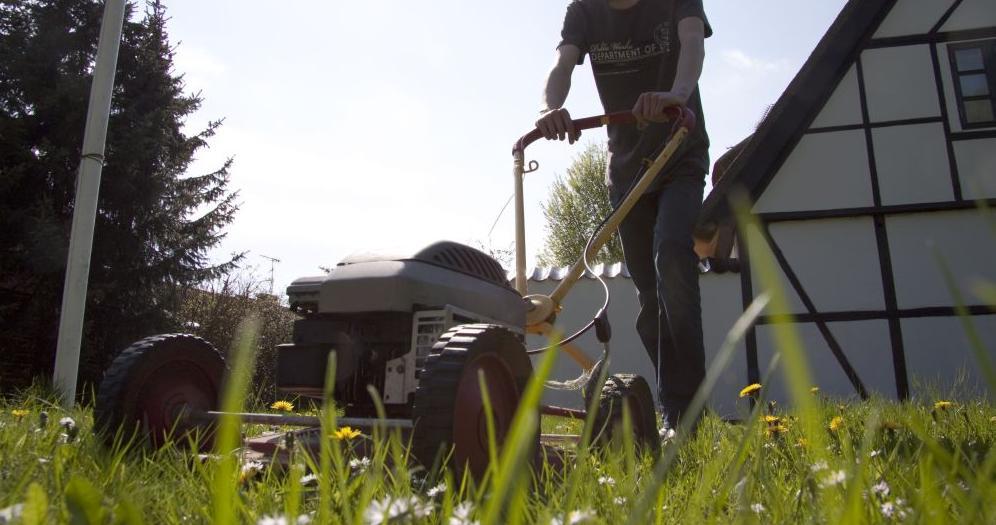 Am besten mähen Gärtner und Gärtnerinnen ihren Rasen vor dem Winter nochmal.