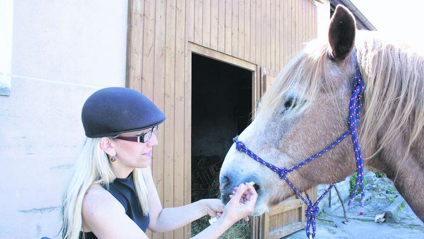 Krebskrankes Pferd Larry sucht Unterstützer