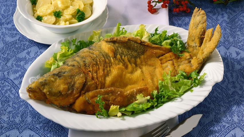 Der Franken liebster Fisch - Alles rund um den Karpfen