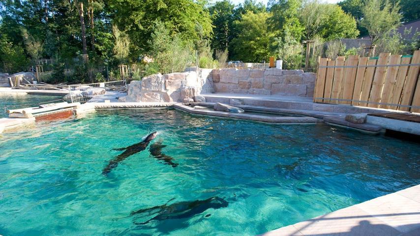 Im Juli 2011: Erste Bewohner ziehen in die Delfinlagune