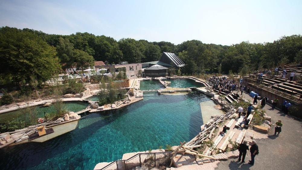 Die Delfinlagune des Nürnberger Tiergartens bereitet seit Jahren Probleme.