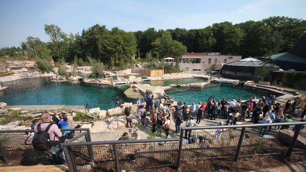 Nur fünf Jahre nach der Eröffnung der Delfinlagune ist diese bereits ein Sanierungsfall.