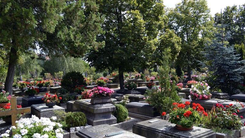 Ganz typisch für den Johannisfriedhof sind die Steingräber.