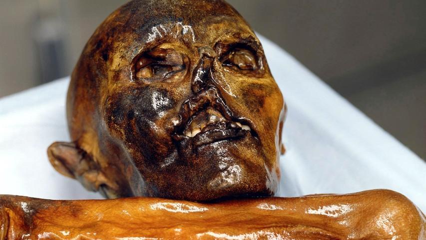 Die Mumie fasziniert auch 20 Jahre nach dem Fund die Menschen. Wie lebte der Mann aus dem Eis? Die Gletschermumie stammt aus der späten Jungsteinzeit und wird auf ein Alter von 5300 Jahren geschätzt. Ötzi ist die einzige erhaltene, durch natürliche Gefriertrocknung konservierte Leiche aus dieser Zeit in Mitteleuropa.