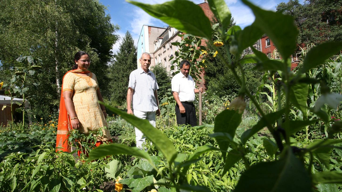 Auch der Interkulturelle Garten an der Uferpromenade lädt im Lauf der Woche ein - mit irischer Musik.