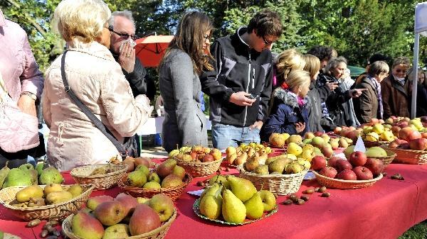 ...sich zu entscheiden. Dem Biologen Dieter Speer vom Landschaftspflegeverband Mittelfranken dürfte der große Andrang gefallen haben. Er will Verbraucher sensibilisieren, regionales Obst zu kaufen. Denn nur...