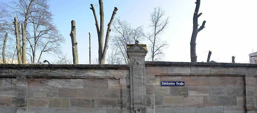 """Als """"Trauerspiel"""" bezeichnet Anwohnerin Angie Thamm die große Abholzaktion auf dem ehemaligen Gelände der Tucher-Brauerei."""