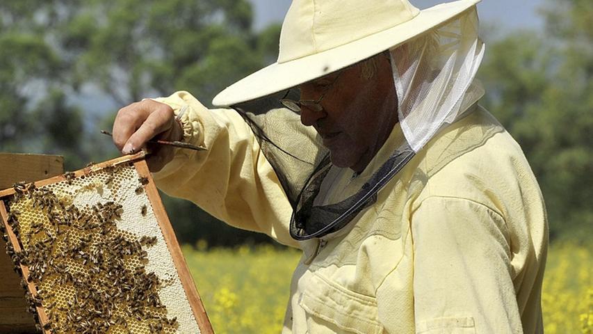 """""""Dantop"""" vernichtete Bienenvölker Wendelsteiner Imker"""