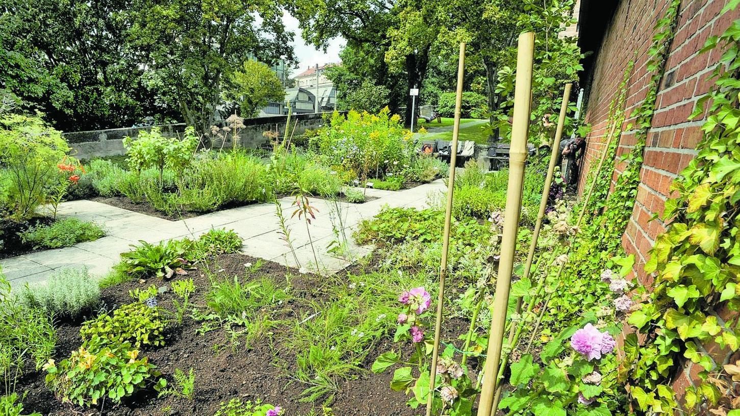 Der Heilkräutergarten auf der Stadtmauer am Hallertor wurde vom Bund Naturschutz und einer Gruppe von Ehrenamtlichen wiederbelebt und erfreut sich seitdem wachsender Beliebtheit. Zugänglich ist er ab April.