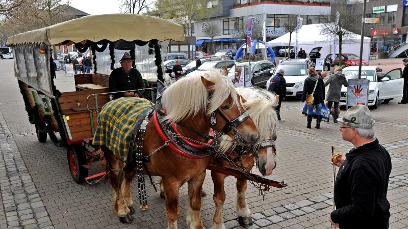 Auch eine Pferdekutsche stand für die Besucher mit bereits müden Beinen bereit.