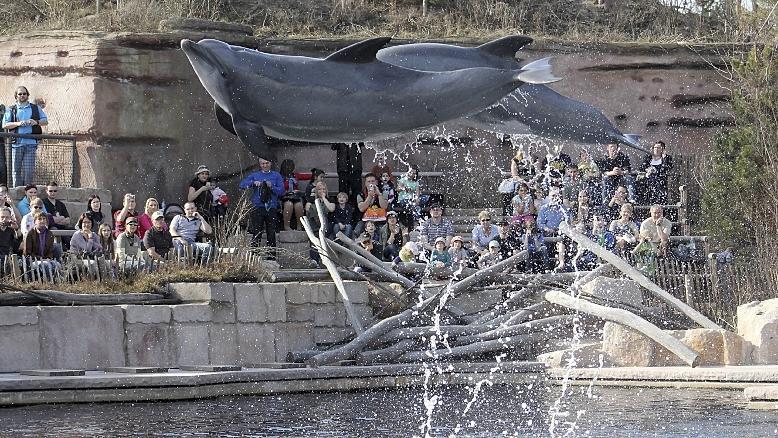 Empörung über Kostensteigerung beim Lagunenbau