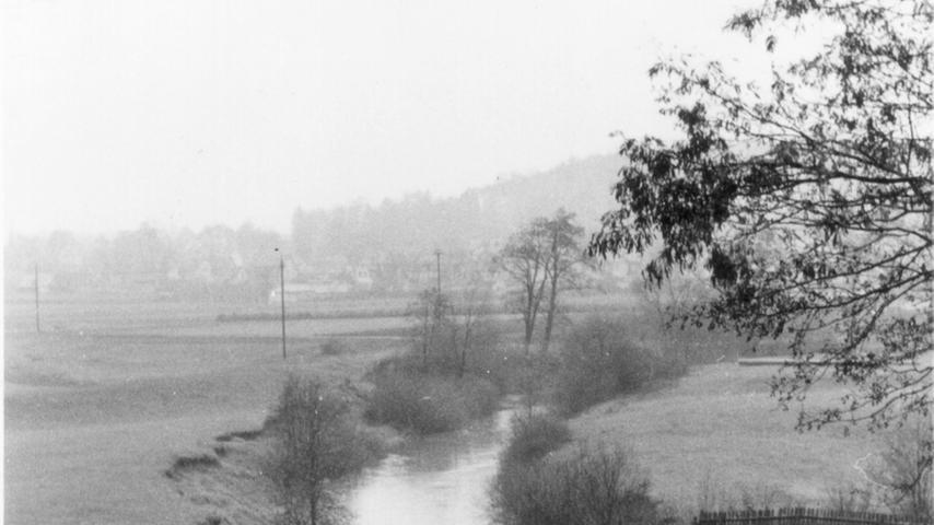 Blick über das Gelände in Richtung Mögeldorf. Bevor der Stausee existierte, durchfloß die Pegnitz seit Jahrhunderten in zwei Armen eine Flussaue. Das Pegnitztal blieb wegen der häufigen Überschwemmungen vom Menschen weitgehend unberührt.