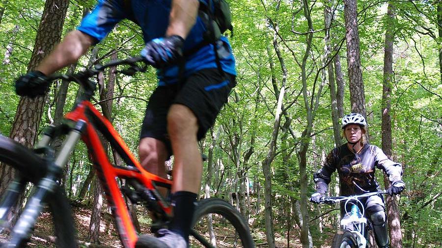 Welche Wege sind im Wald für Radsportler geeignet - und welche nicht?
