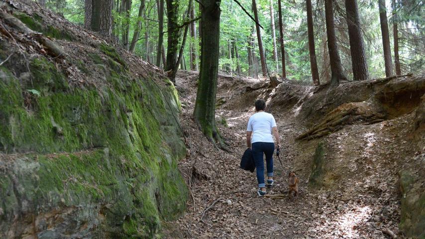Über steile Hohlwege geht es hinauf auf den Dillberg.