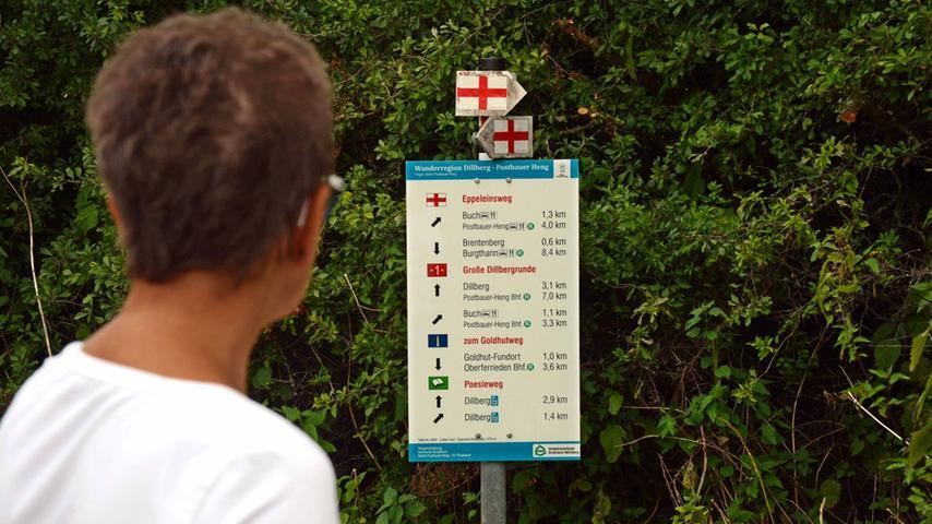 Welche Richtung nehmen wir denn? Das Angebot an Wanderwegen rund um und über den Dillberg ist groß.