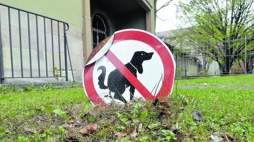 Besitzer haften für ihren Hund - und seine Geschäfte. Wird das Geschäft nicht ordnungsgemäß entfernt, verlangt die Stadt Nürnberg 35 Euro.