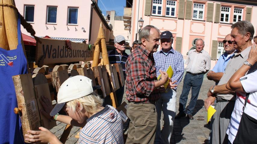 Holz ist ein lebendiges Material und mindestens genauso verschieden ist es. Deshalb wartete auf die Besucher interessantes Anschauungsmaterial zum Anschauen, Befühlen und Studieren.