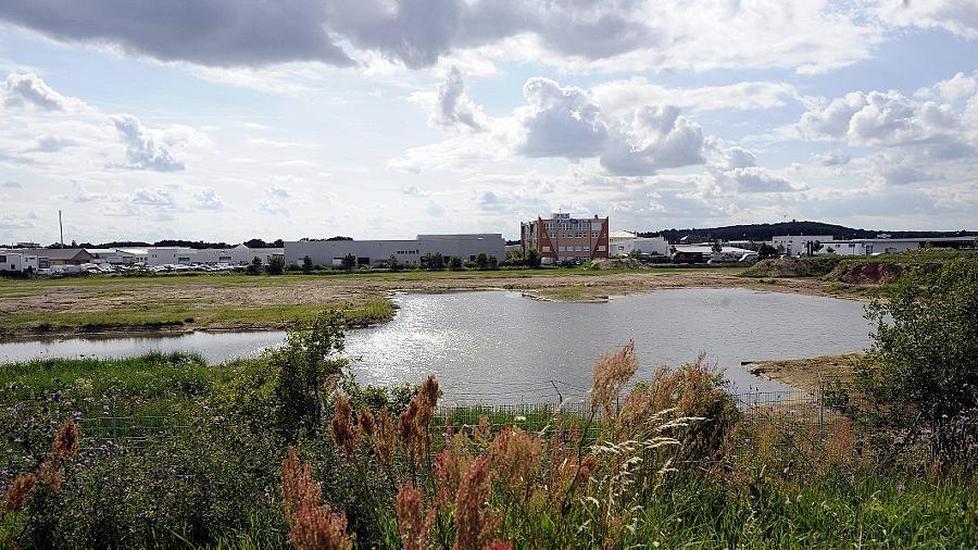 Gewerbefläche und Biotop: Das Grundstück zwischen Main-Donau-Kanal und Johann-Zumpe-Straße wird wohl nicht so schnell bebaut werden können wie ursprünglich geplant war.