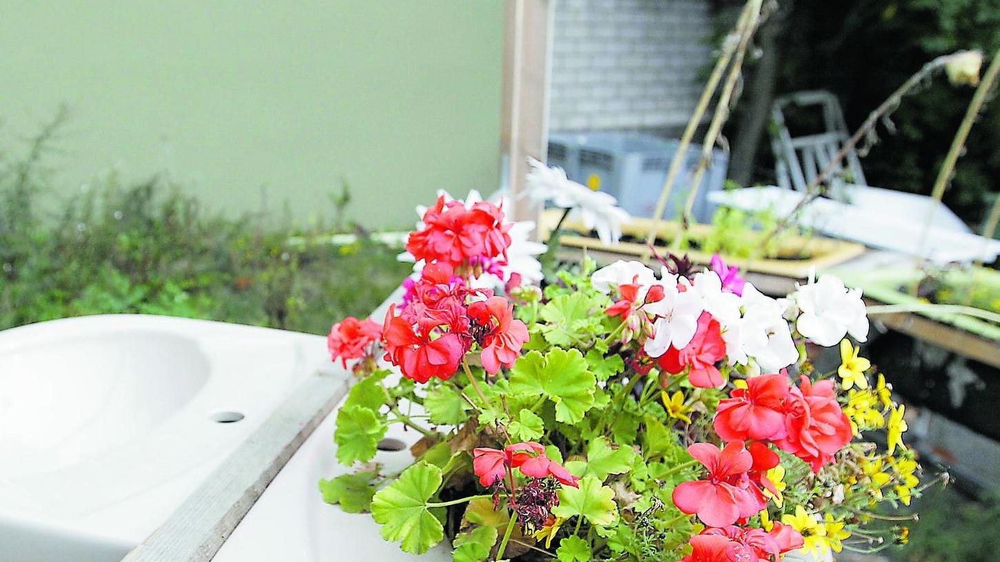 Originelle Behälter: Selbst in Waschbecken wächst und blüht es, wobei Blumen im mobilen Stadtpark eher selten sind.