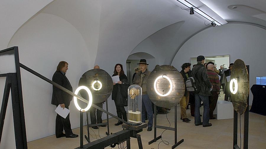 Installation in der Winterausstellung im Kunstpalais.