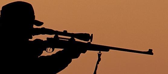 Dem Waidmann, welcher in Rehhof einen Hund erschossen hat, droht der Verlust seines Jagdscheins.