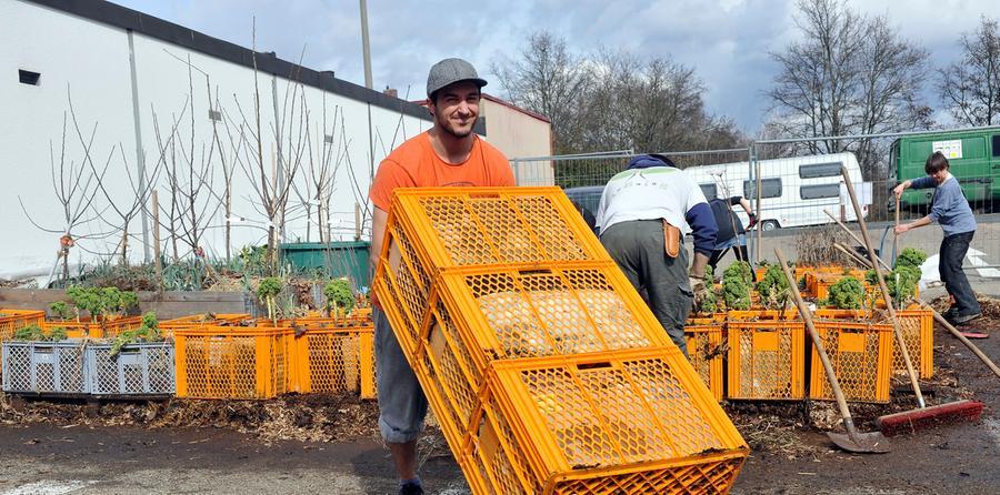Wie im vergangenen Jahr soll auf der Brachfläche wieder das ungewöhnlichste Gemüseanbaugebiet Nürnbergs entstehen.