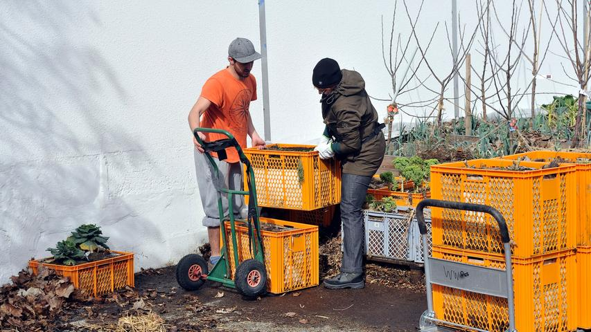 Dann war es Zeit für den Aufbau des Obstkisten, in denen Kartoffeln, Möhren und Gartenkräuter gedeihen sollen.