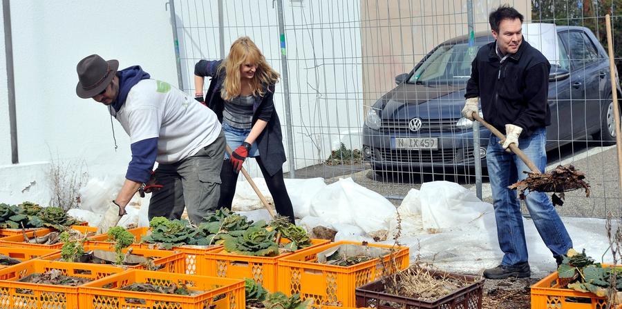 Dann gibt es bald wieder Gemüse vom Quelle-Areal.