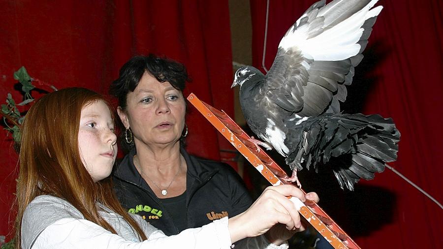 Noch wird die Tauben-Nummer geübt. Eine Woche lang bereitet sich der Ammerndorfer Nachwuchs unter professioneller Anleitung auf den großen Auftritt vor.