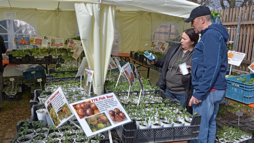 So viele verschiedene Arten der Tomate: Da staunten die Besucher nicht schlecht.