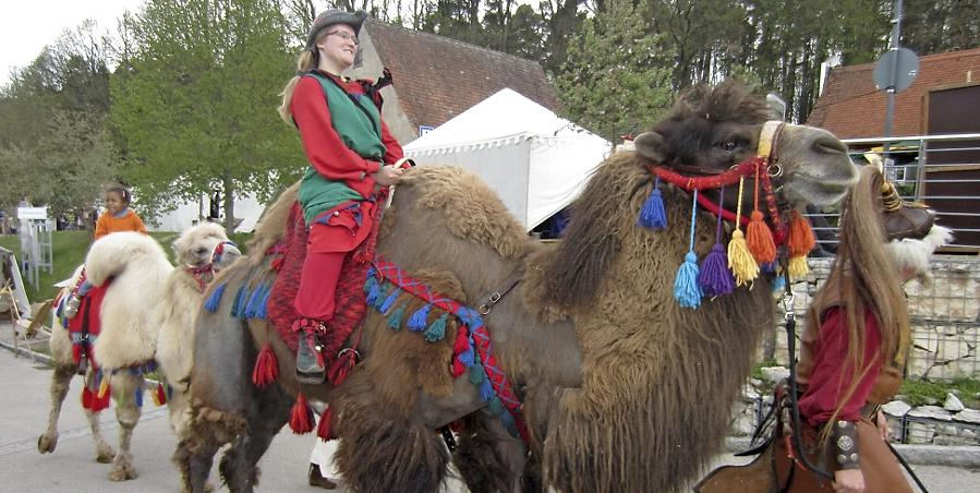 """Auf den prächtig geschmückten Tieren der """"Mongolen"""" durften auch die Besucher ihre Runden drehen."""
