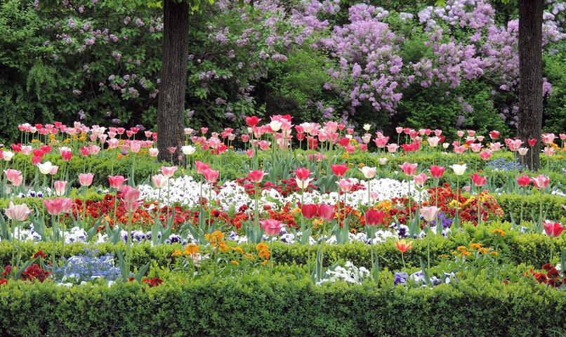 Im Lauf der Jahrhunderte gehörten einige Gartenanlagen zur Burg, die nicht mehr erhalten sind. Von 1538 bis 1545 wurden an Nord- und Westseite Bastionen errichtet, auf denen später der Burggarten (Bild), angelegt wurde. Der Maria Sibylla Merian-Garten liegt direkt neben dem Heidenturm und ist nach der Künstlerin und Naturforscherin benannt, die 15 Jahre lang in Nürnberg lebte. Es gibt noch einige kleinere Gärten, die aber nicht zugänglich sind.