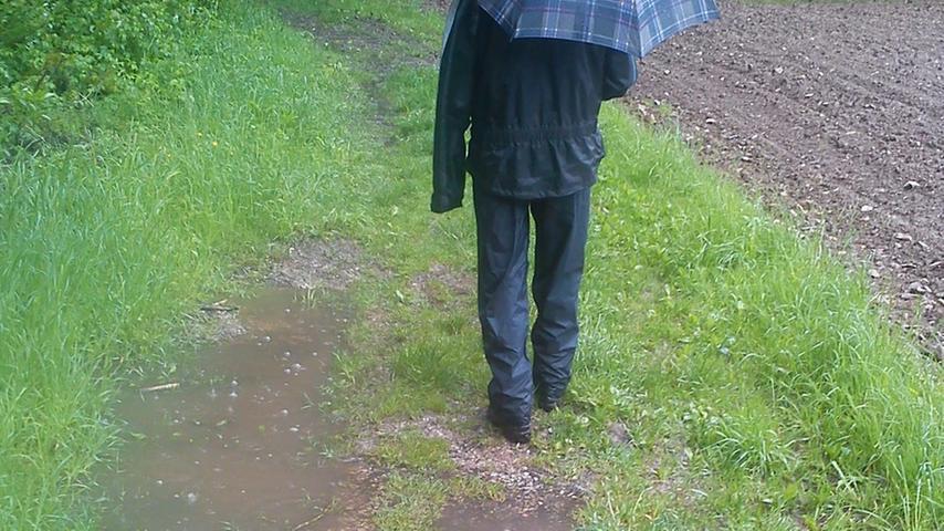 Nur die ganz Hartgesottenen machten sich zu einem Spaziergang auf...