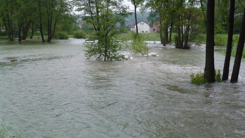 Büsche und Bäume versanken im Hochwasser.