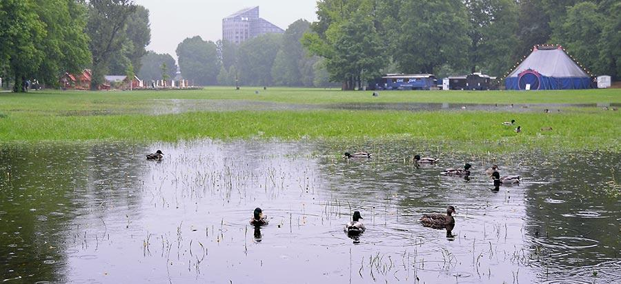 Nürnberg dagegen blieb verschont. An ein Picknick auf der Wöhrder Wiese war dennoch nicht zu denken.