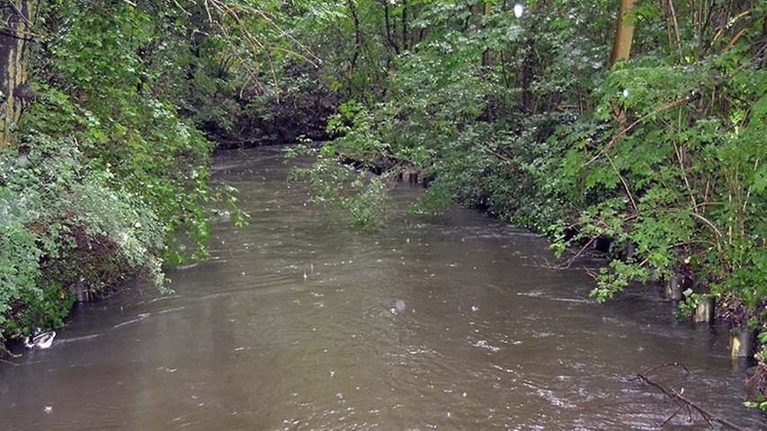 Der Fluss ist angeschwollen und tritt an der einen oder anderen Stelle beinahe schon über das Ufer.