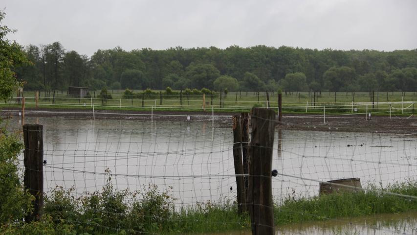 ...zeigten sich deutliche Spuren des Hochwassers.