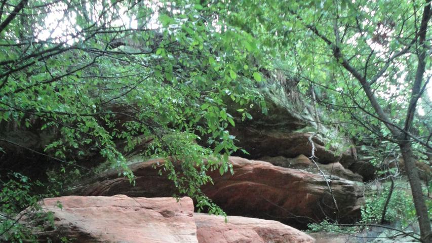...alle trocken gebliebenen Felsen fast schon surreal in der triefend nassen Umgebung.