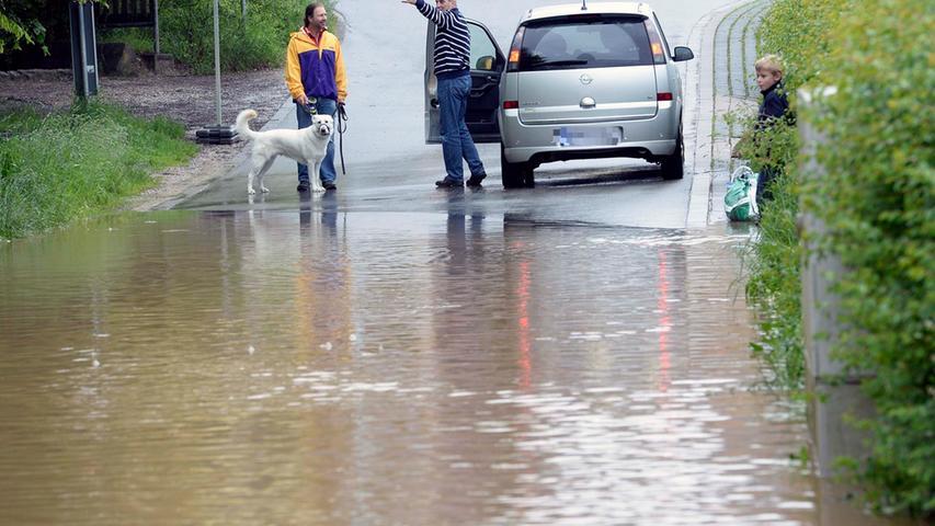 Während sein Herrchen mit einem Autofahrer redet, wirft dieser Hund einen besorgten Blick in Richtung Wasser.