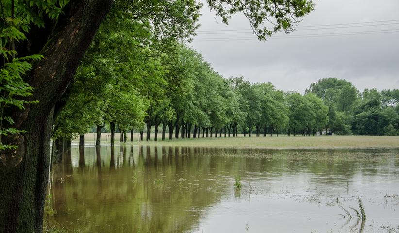 Der Käppnerweg am Fürther Rednitzgrund blieb von dem Wassermassen ebenfalls nicht verschont.