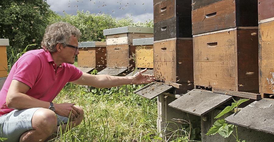 Eckhard Göll hat ein Händchen für seine Bienen. Er hat seine rund 30 Völker gut über den Winter gebracht.
