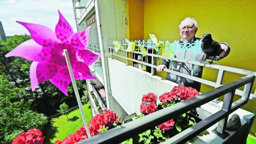 Rentner kämpft gegen Tauben auf dem Balkon