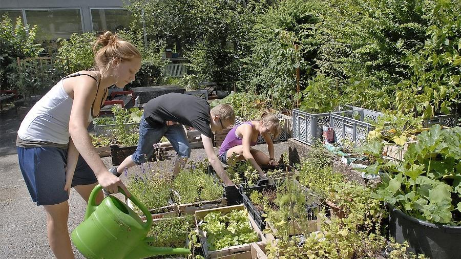 ASG-Schüler kümmern sich um die Beete im Stadt-Land-Kindergarten.