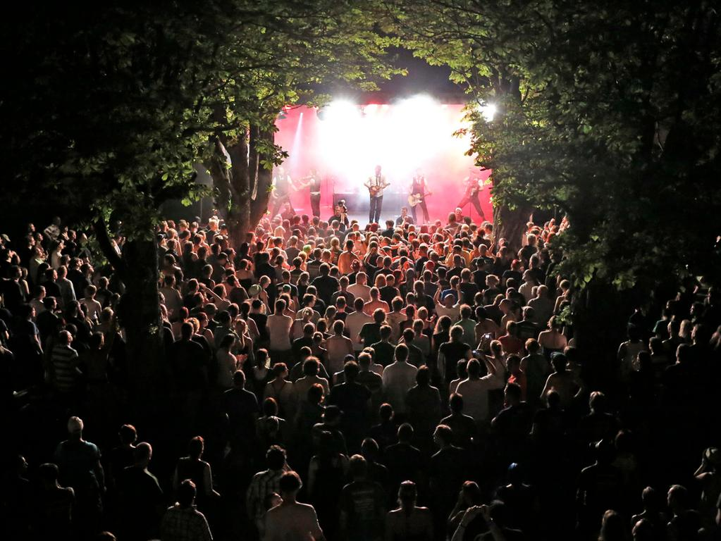 RESSORT: Forchheim B1 Lokales Feuilleton..FOTO: HvD..MOTIV: Das Folk-Festival  Shamrock Castle auf Schloss Jägersburg in Bammersdorf, Fiddler's Green, 27.  Juli 2013