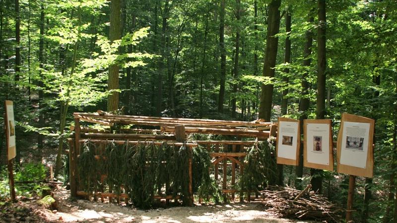 ...an vielen Informationsstationen interessante Fakten zum Wald entdeckt werden.